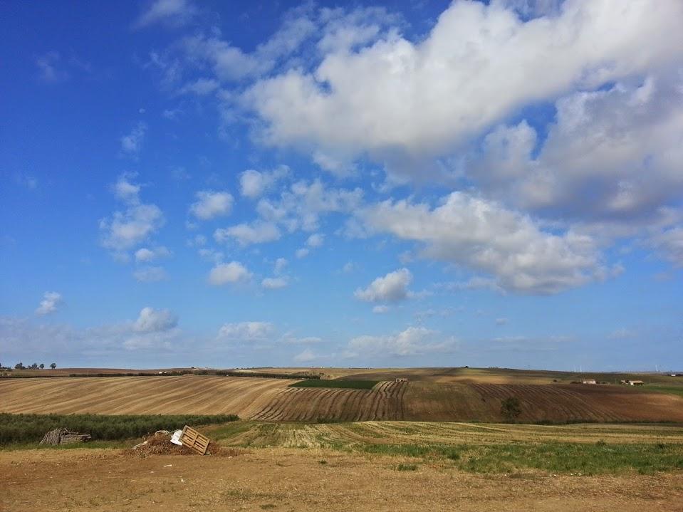 paesaggio1