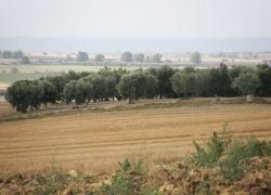 paesaggio4
