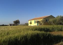 paesaggio6